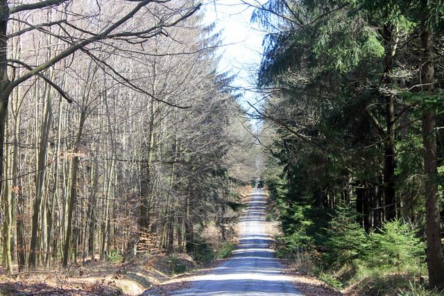 Wanderung zwischen Pulsnitz und Grossröhrsdorf